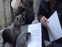 Seals Support the Agreement